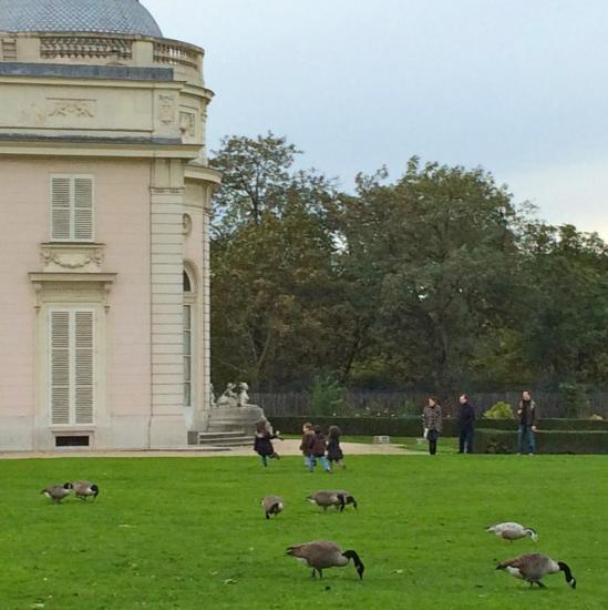 Jardin de Bagatelle - Paris